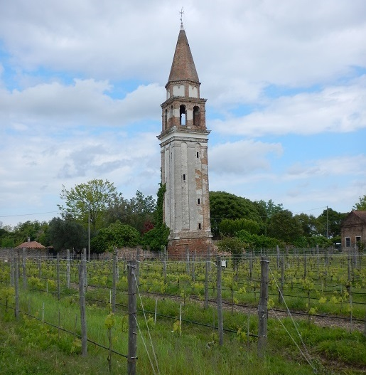 The Venissa Estate vineyard on Mazzorbo. (Photo by Steve Jankowski)